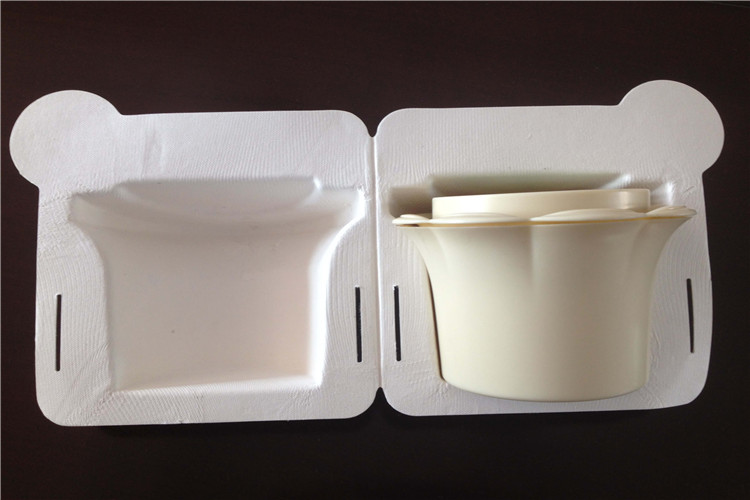 moulded fiber packaging